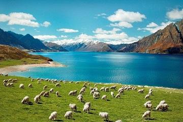 GIẢI ĐÁP THẮC MẮC NỘP HỒ SƠ DU LỊCH NEW ZEALAND TẠI VFS 2020