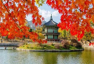 Korea Visa