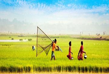 VISA BANGLADESH CHO NGƯỜI NƯỚC NGOÀI TẠI VIỆT NAM